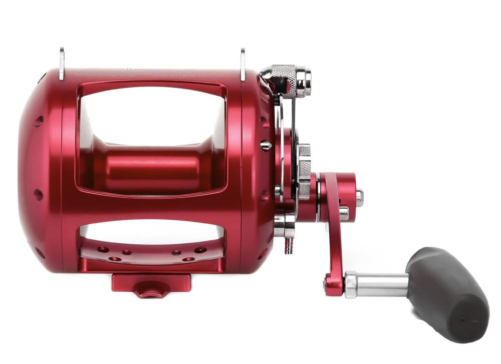 Avet EXW 50/2 2-Speed Reel - Roy's Bait and Tackle Outfitters