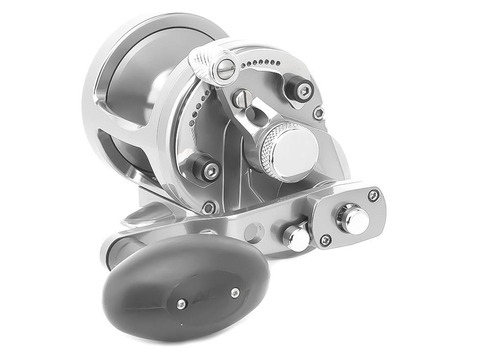 Avet SX 6/4 MC Raptor 2-Speed Reel - Roy's Bait and Tackle Outfitters