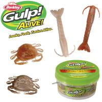 Berkley Gulp Alive 3in Shrimp 2in Peeler Crab Assortment Pint Bucket