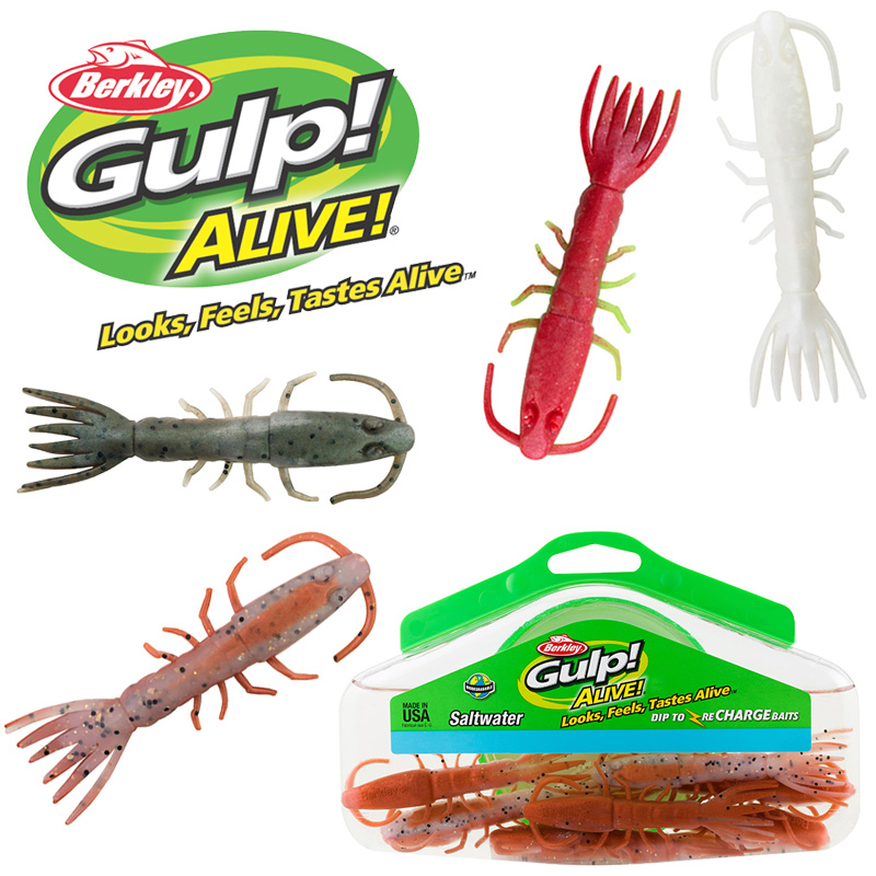 Berkley Gulp Alive Hollow Shrimp Half Pint Bucket
