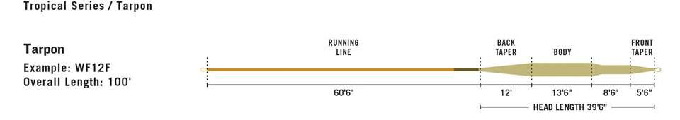 RIO TARPON FLY LINE PROFILE