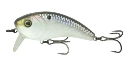 SHAD SCALES